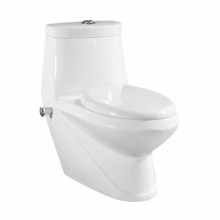Le bidet combiné de toilette de conception populaire du Moyen-Orient