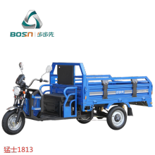 Cargo Electric Tricycles Electric 2021 New Arrival