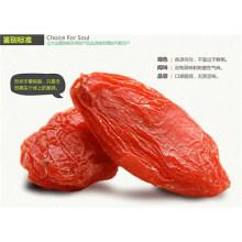Venda quente saúde alimentar Goji Berry de Ningxia, China Snack