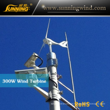 300W 24V Alternator Mini Wind Turbine