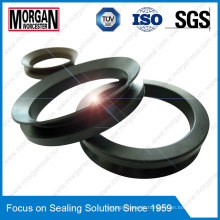 Va Type Best Quality Fluid/Coolant/Water V Ring Seal
