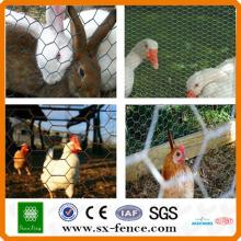clôture de treillis métallique de poulet et de lapin