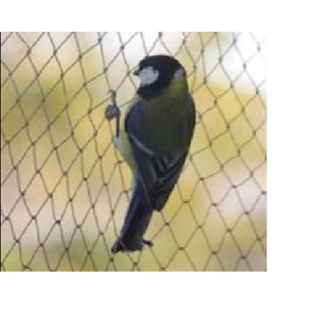 Rete antiuccello Bird Keeping Net