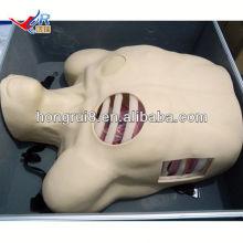 Manequim de drenagem pleural ISO, Descompressão pneumotórax, modelo educacional