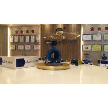 válvula de borboleta do óleo de gás do vapor dn600 ss classe da válvula de borboleta 150