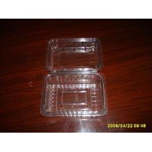 Блистерная упаковка для продуктов питания (HL-119)