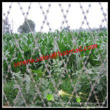 Hot galvanized security weld razor blade wir e mesh fence
