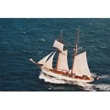 Reparos e reformas profissionais de veleiros antigos