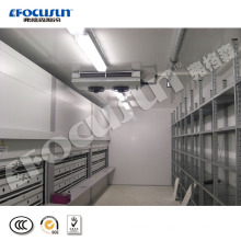Focusun advanced Industrial cold room with high quality