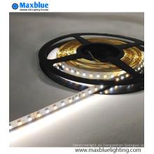 DC12V / 24V SMD 3014 CCT Luz de tira ajustable del LED