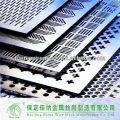 Acero 304 Perforated Metal Mesh / Perforated Metal Hojas, placas hechas en China