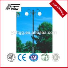 Hot Did Galvanized Decorative Led Lights pole sales on market