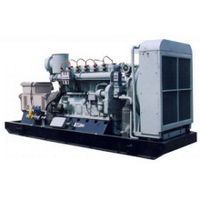 20kVA-1980kVA Fabricante de Metano / Biogás Fabricante