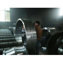 Crb Cylinderical Roller Bearing of Zgxsy Brand Supplied by Xsy Bearing