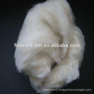 combed fine sheep cashmere wool fibre