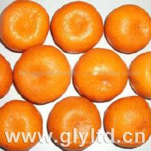 Fournisseur professionnel pour bébé frais Mandarin