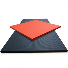 Cheap 1m*2m Best Selling Martial Arts Mat Judo MMA Tatami Mat for sale