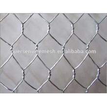 High quality Hexagonal wire mesh, netting for raising chicken
