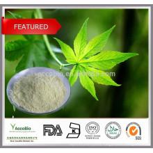 100% Natural top Quality Rubus Suavissimus extract /Sweet Tea Leaf Extract