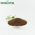 saponin Melhor qualidade Semente de Chá de Adubo Orgânico com palha camarão shell limpo lagoa