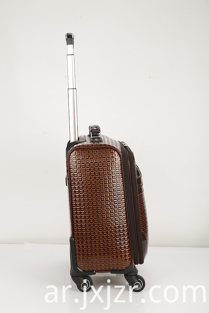 Carry-on Spinner 4 Wheel Light Weight