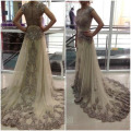 2017 Free Shipping Formal Evening Dresses vestidos long Prom Gowns Fast Delivery