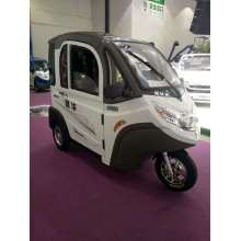 Three Wheel Electric Vehicle