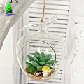 Оптовая Apple Shaped Glass Висячие Air Terrarium Завод