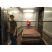 Fjzy-High Quality and Safety Freight Elevator Fjh-16007