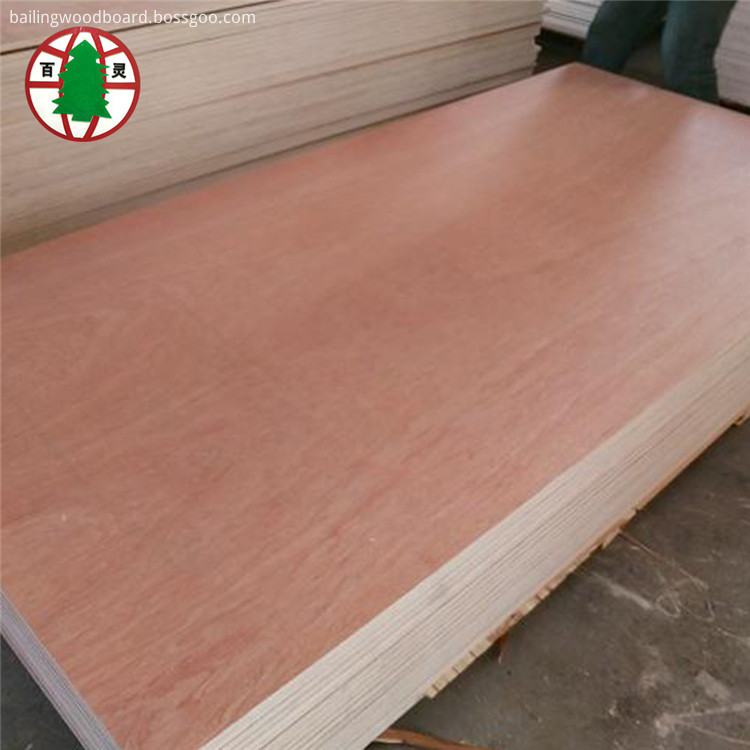Bintangor plywood02