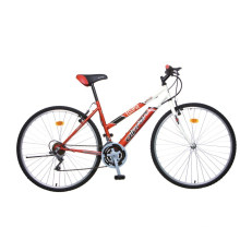 "28"" Steel Frame Mountain Bike (2804)"