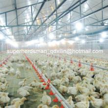 Equipamento completo da exploração avícola do conjunto completo da qualidade superior