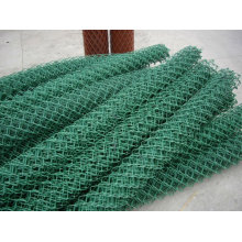 Dianond shaped netting