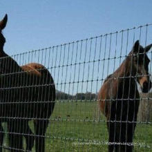 Factory Supply High Quality Farm Fence & Field Fence & Cattle Fence