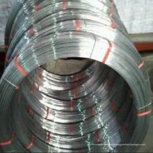 Fil ovale en acier galvanisé / Fil plat
