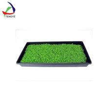 plateau de semis en plastique
