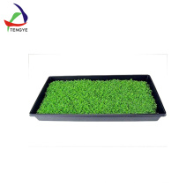 factory vacuum forming plastic seeding tray