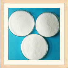 Cationic Polyacrylamide Paam (APAM/CPAM) for Water Treatment Chemical