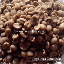 Arabica grüne Kaffeebohnen