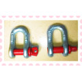 U. S Bolt Type Color Screw Pin Drop Forged D/Bow Shackle