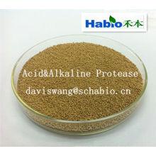Proteasa Ácida y Alcalina