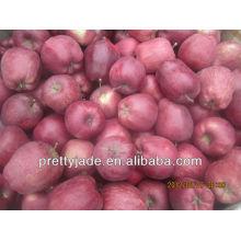 new crop red huaniu apple