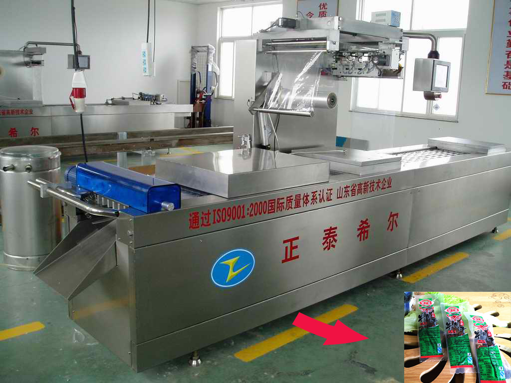 automatic continuous strech film vacuum packaging machine for beef,chicken,fish