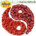 Medlar Barbary Wolfberry Fruit Organic Goji
