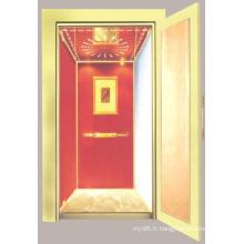 Aksen Accueil Elevator Villa Elevator Mrl J-009