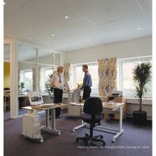 Mesa ergonômica de mesa de trabalho da estação de trabalho ergonômica