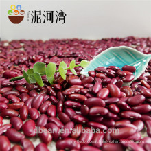 high quality dark red kidney bean Shanxi Variety for Cannery