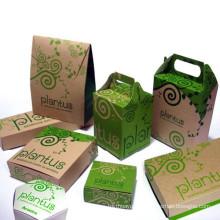 Paper Food Packing Boxes/Food Box/Fast Food Take Away Box