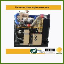 Motor diesel de la zona 2 ignífugo