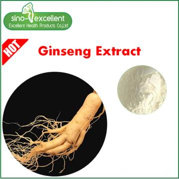 100% Pure Panax Ginseng Estratto